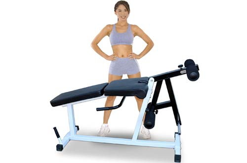 Deltech Fitness Leg Extension Machines & Seated Leg Curl Machine