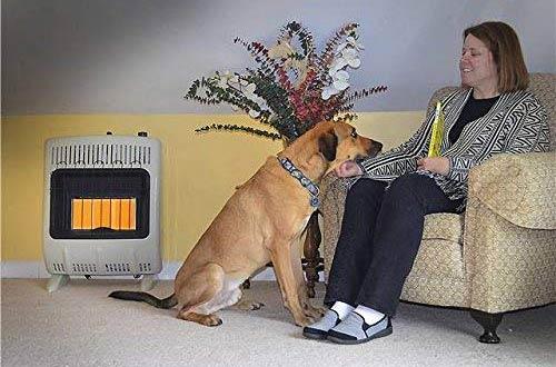Mr. Heater Corporation Vent-Free 20,000 BTU WallRadiantNatural Gas Heaters