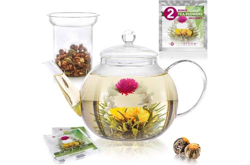 Glass Teapot with Glass Infuser