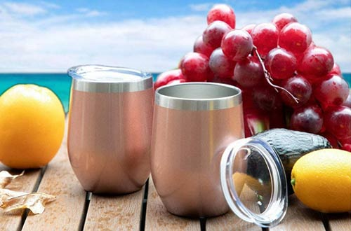 Sunwill Store Insulated Wine Tumblers