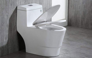 WOODBRIDGE ModernComfort Height Dual Flush Toilets